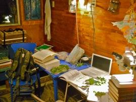 Guerrilla field plant ID lab during Ozarks fieldwork