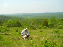 Collecting plant community data in the White River Hills of Missouri