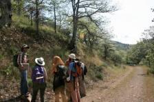 Teaching field botany on Scotch Creek, Cascade-Siskiyou National Monument