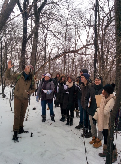 Teaching winter tree ID in the general ecology class at UW-Madison