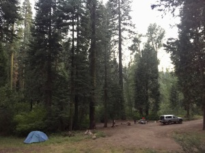 Field camp during the 2016 survey of the Long Fire near Kyburz, California