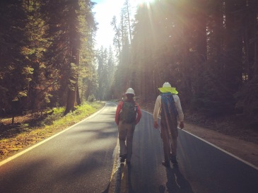 The commute home after a long day surveying the Grouse Fire in Yosemite