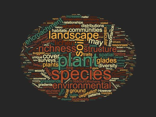 Word cloud based on my research paper abstracts
