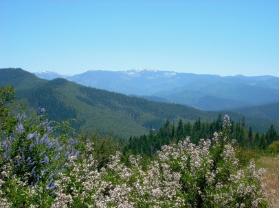Looking out at the Little Applegate Valley's mix of veg types in southern Oregon circa 2008