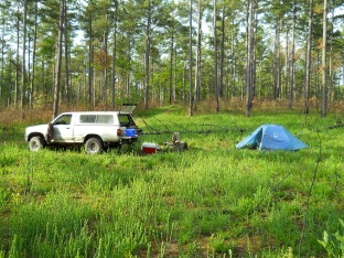 Campsite during fieldwork in Ozark National Forest near Optimus, 2012