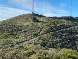 Leading a lichen walk with CNPS on San Bruno Mountain in 2020