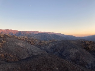 Post-fire landscape at the Quail Ridge reserve, fall 2020
